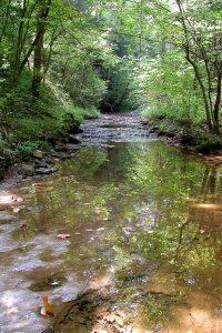 Main-stream-Chalet-Nivale